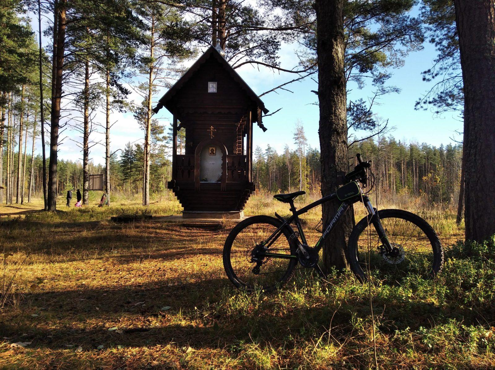 Осенняя велопрогулка в Дубровских лесах .