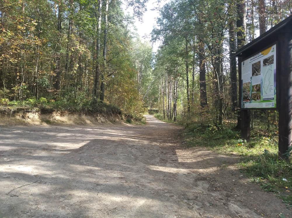 Экологические маршруты на Колтушских высотах